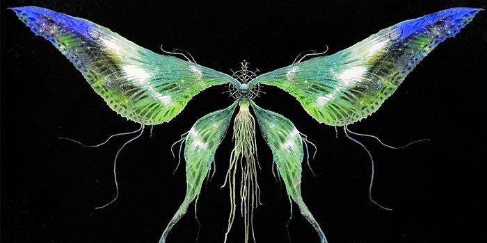 Moonlight Butterfly