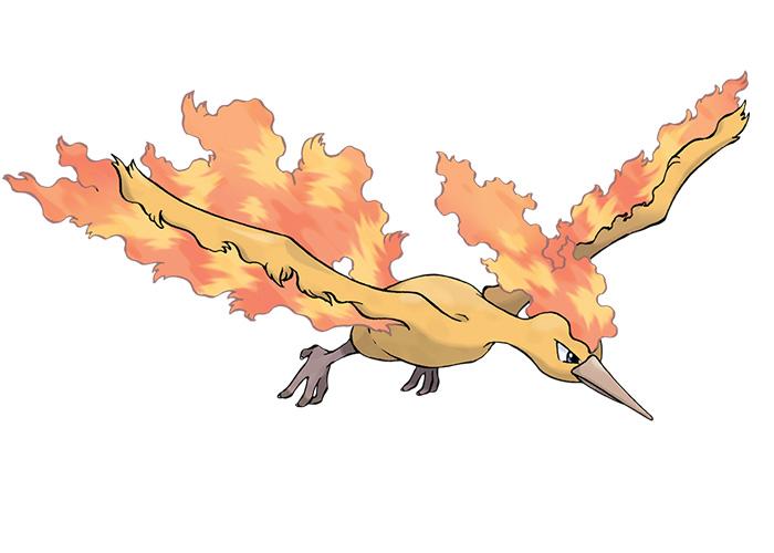 Flame Pokémon Moltres